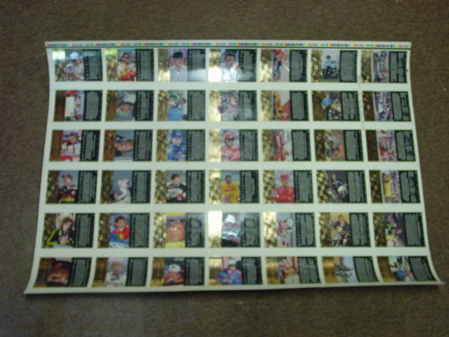 1994 Action Packed with 1993 Career Stats Uncut Card Set